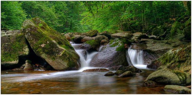 Il tetto verde d'Europa: visita al Parco nazionale Bayerischer Wald!