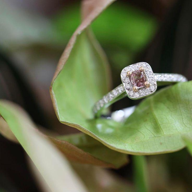 Pink diamond halo engagement ring // KL Diamonds
