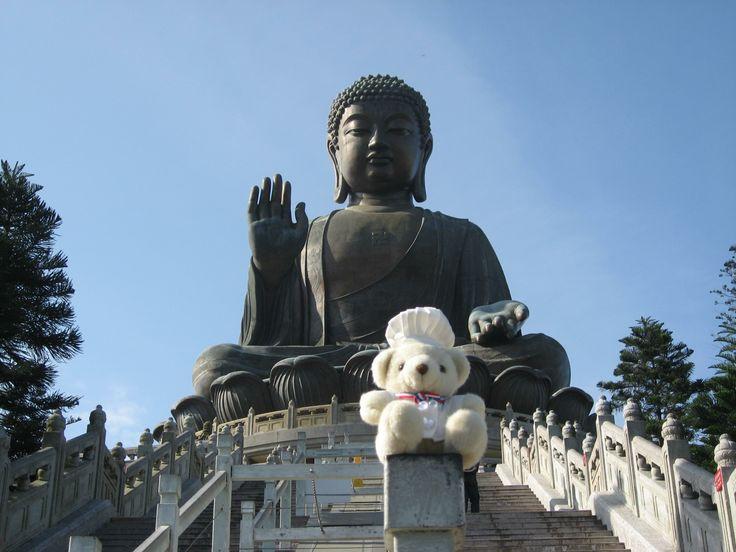 The bear visited Big Buddha in Hong Kong