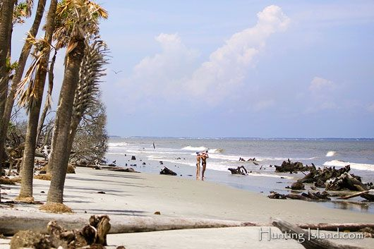 17 Best Images About Hunting Island South Carolina On Pinterest Lighthouses Eat Sleep And Sun
