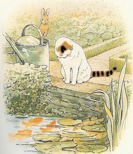 "Beatrix Potter's 'The Tale of Peter Rabbit' (1902). ""Peter came to a pond where Mr.McGregor filled his water-cans. A white cat was staring at some gold-fish."""