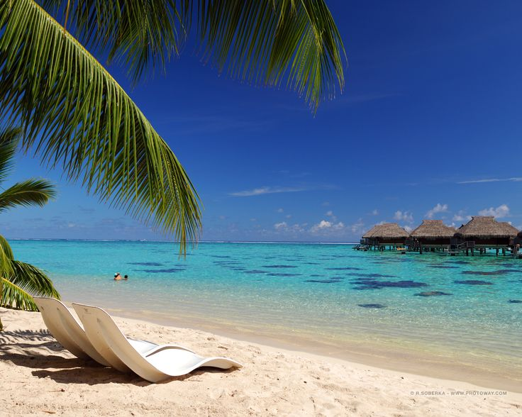 Oceanfront Hotels Site Is A One Stop Shop For Top Beachfront Around The World Find Quick Reservations Into Cheap And Luxury