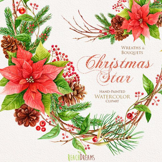 Christmas Star Poinsettia. Merry And Bright. Watercolor Bouquets and Wreaths, Christmas decoration, Hand painted clipart, New year