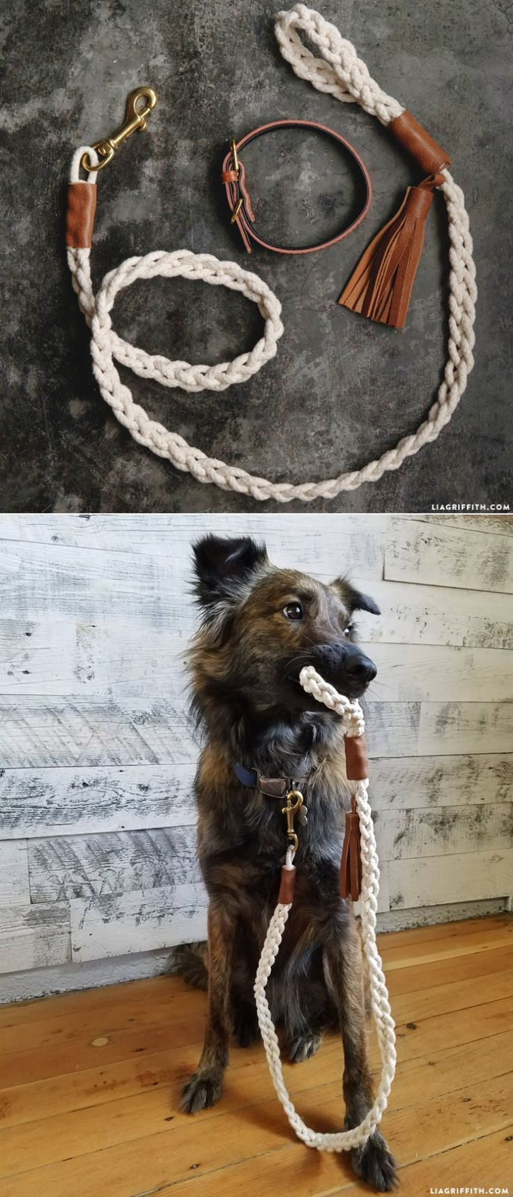How cute is this DIY braided dog rope from @liag? We love any idea that is just as cute as it is easy to make! It's also no sew.