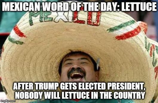 More election humor in Mexican Word of the Day! Haha! ~Me  #mexicanwordoftheday #LOL #election2016 #trumpisthepresident