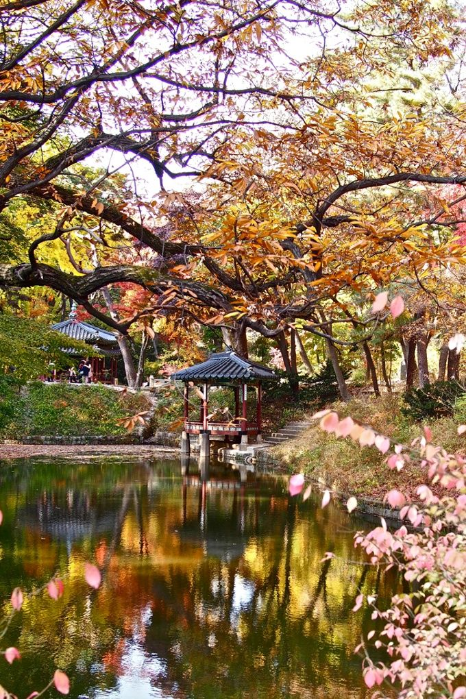 1 Anguk (Changdeokgung) (Autumn) – One of five former royal residences in downtown Seoul, Changdeok Palace is renowned for the way its structures balance with the natural landscape, a signature of traditional Korean architecture. After decades of development, the city is once again looking for ways to harmonise nature and urban living.
