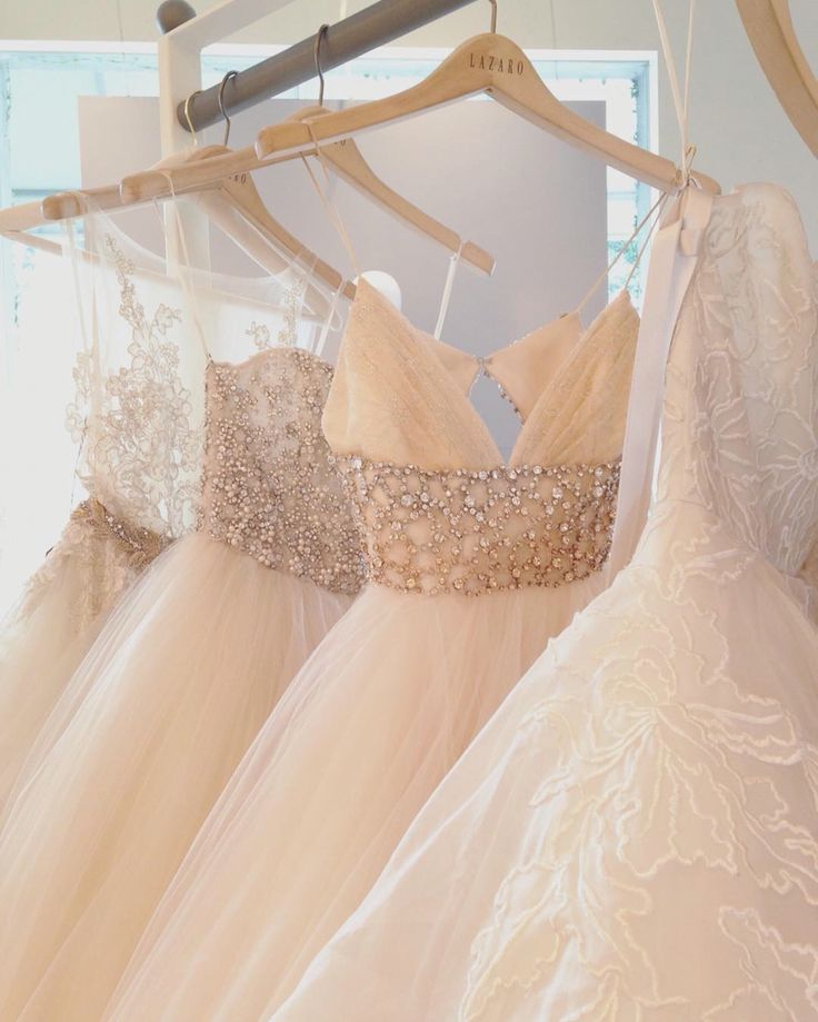 53 best images about trunk shows on pinterest dream for Wedding dress trunk shows