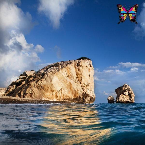 ОБЗОР НОВОСТЕЙ И ПРОИСШЕСТВИЙ НА КИПРЕ. А что у нас на Кипре: древняя пещерная церковь, молодые черепашки и вечная фантастическая погода! http://cyprusbutterfly.com.cy/node/3979  На этой неделе на Кипре было три крупных происшествия. В Лимассоле вновь был ограблен банк – в четвертый раз за последние месяцы. Также был взорван автомобиль. До этого их только поджигали. И вновь прогремел взрыв у входа в офис. На этот раз пострадал салон красоты. Полиция Кипра в это время не только занималась…