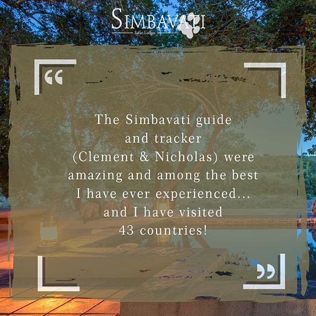 Our expert guides and trackers are passionate about wildlife approaching animals with courtesy and respect to give you a pure and natural game drive experience. We received this wonderful review from the Felix family: . . . #Review #Tripadvisor #Guest #Simbavati #Travel #Bush #Holiday #Getaway #AfricanSafari