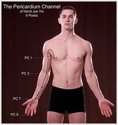 Pericardium (in Kinesiology: Circulation-Sex)