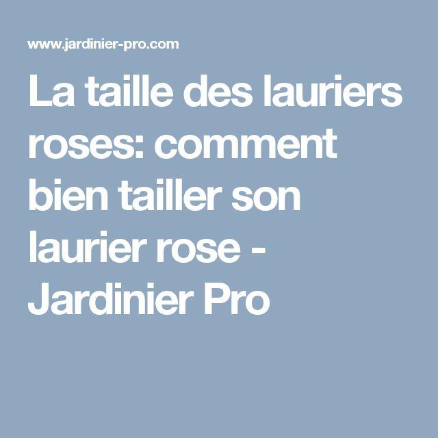 The 25 best laurier rose ideas on pinterest le laurier - Comment tailler la menthe ...
