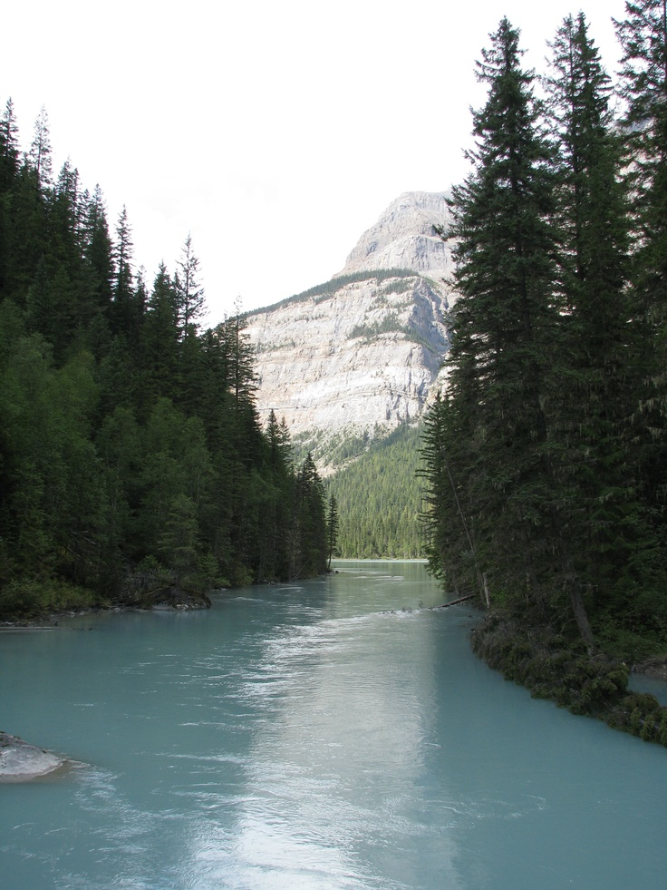 Part of Kinney Lake at Mount Robson