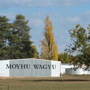 Moyhu Wagyu: We are located in a small valley in the King Valley area of Victoria and have been breeding Wagyu cattle since 1997 using the best available genetics for meat quality.  In 2012 we also won a silver medal at the Australian Wagyu Association Meat taste competition.