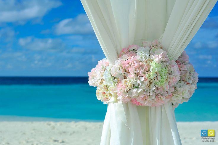 Hydrangea (hortensia) op een bruiloft. Leuk bedacht, zo om dat doek.