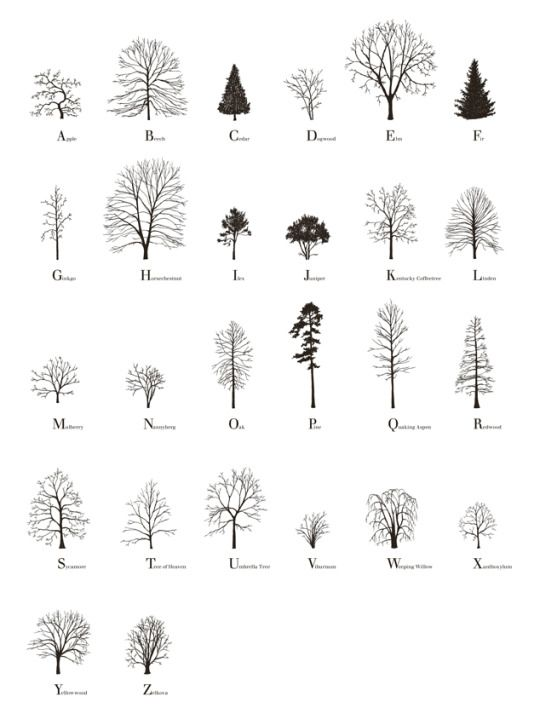 About Trees by Katie Holten A book written in a typeface of trees, creating pages of forests.
