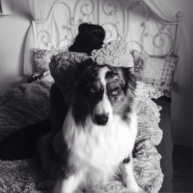 Hunde Foto: Sandra und Jazz - Prinz Charming.jpeg Hier Dein Bild hochladen: http://ichliebehunde.com/hund-des-tages  #hund #hunde #hundebild #hundebilder #dog #dogs #dogfun  #dogpic #dogpictures