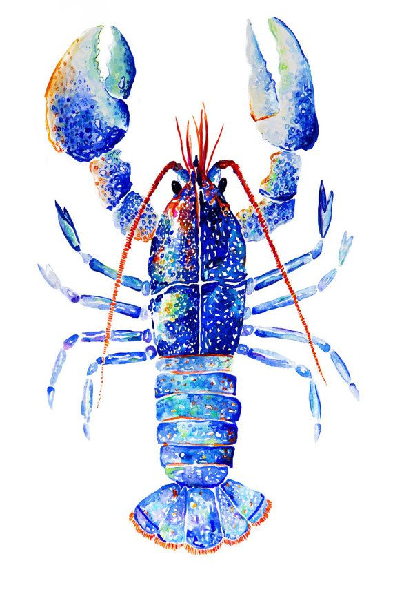 Kaleidoscope Lobster Giclée Print. Wall by VioletteTideStudios