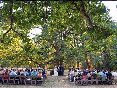 17 terbaik ide tentang free wedding venues di pinterest mount pisgah arboretum eugene oregon wedding venues 1 junglespirit Images