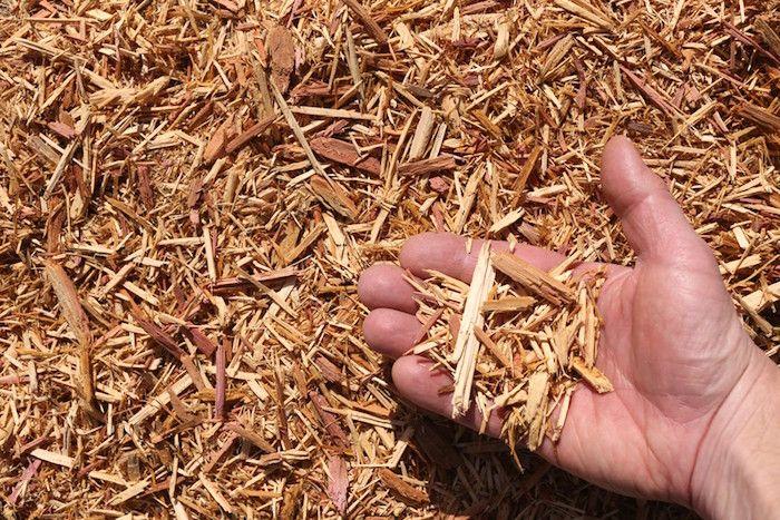 Una de las mejores cosas que puede hacer para ahorrar tiempo en su jardín es usar un buen mantillo. El mantillo reduce el número de malas hierbas que brota