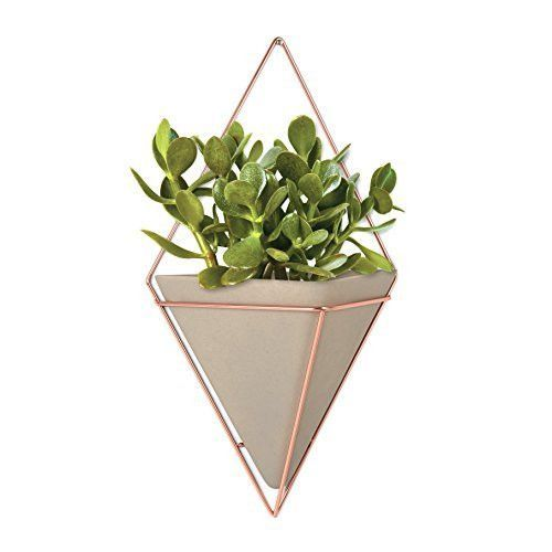 Umbra Trigg Concrete and Copper Wall Vessel, large [2 to 5 Days FREE Shipping]