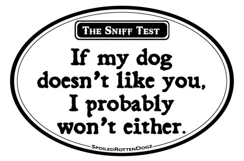 The Sniff Test - Oval Magnet