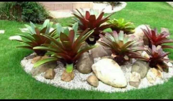 Bromelias con piedras de rio jardin pinterest for Jardines pequenos con piedras y macetas