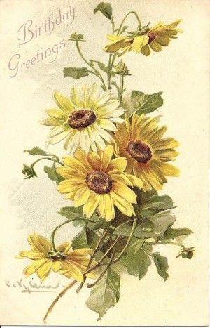 Gallery.ru / Фото #2 - цветочковое продолжение 2 - ninmix...200 free pages of beautiful flowers!!