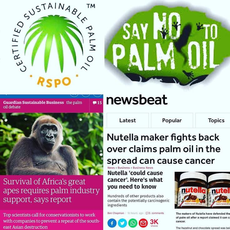 The palm oil industry is linked to major issues such as deforestation habitat degradation climate change animal cruelty and indigenous rights abuses in the countries where it is produced as the land and forests must be cleared for the development of the oil palm plantations. According to the World Wildlife Fund an area the equivalent size of 300 football fields of rainforest is cleared each hour to make way for palm oil production. This large-scale deforestation is pushing many species to…