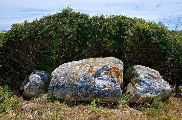 Vila do Bispo | Archaeology: menhirs Standard | Raposeira