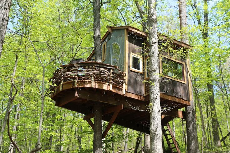 Treehouse In Linden United States The Farm Is 10 Miles