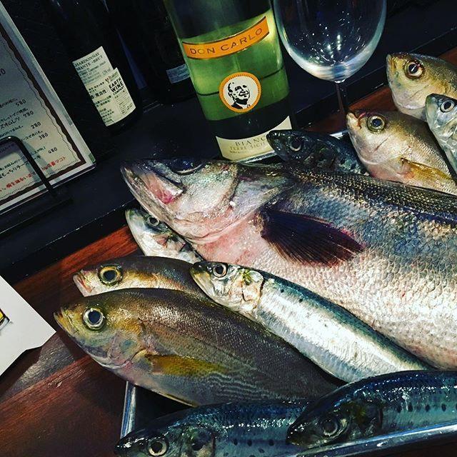 こんばんは!ヴァルバルキッチンです! スタッフゆうきです! 雨の日は気分が落ちちゃいますよね😓そんな時は、ヴァルバルキッチンの料理を食べて元気になりましょう‼️ 今日は、こちらのお魚を自分が捌きます! お魚の名前は、スズキ、イサキ、イワシです! 新鮮なお魚が食べたい方、是非いらっしゃってください! ヴァルバルキッチンの美味しいくて暖かい料理をみなさん食べにいらっしゃってくださいね‼️ スタッフ一同みなさんのご来店心よりお待ちしております #鶯谷 #入谷 #上野 #バル #肉バル #ラクレット #ラクレットチーズ #ヴァルバルキッチン #VarBarKitchen #ディナー #ばんごはん #晩ごはん #肉 #イタリアン #ビストロ #ポンドステーキ #パスタ #ワイン #晩ごはん #うぐ呑み #Ueno #Iriya #Uguisudani #毎月29日は肉料理3割引 🍷東京都台東区根岸1-3-21リフレビル2F/3F 📞03-5808-7861 🏠http://varbarkitchen.com
