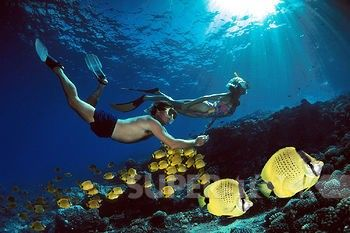 Best 25 honeymoon spots ideas on pinterest honeymoon for Best honeymoon spots in the caribbean