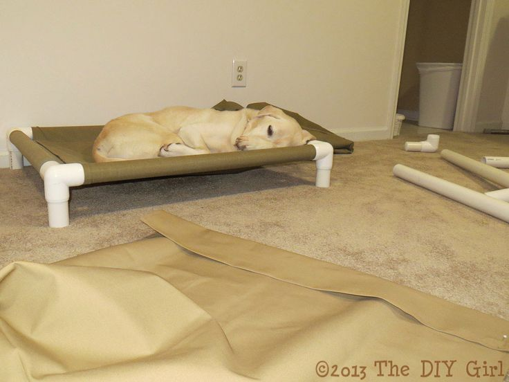 PVC Dog Cot Tutorial - This is what they have at Pete and Mac's and the girls love it--but their's are like $75!