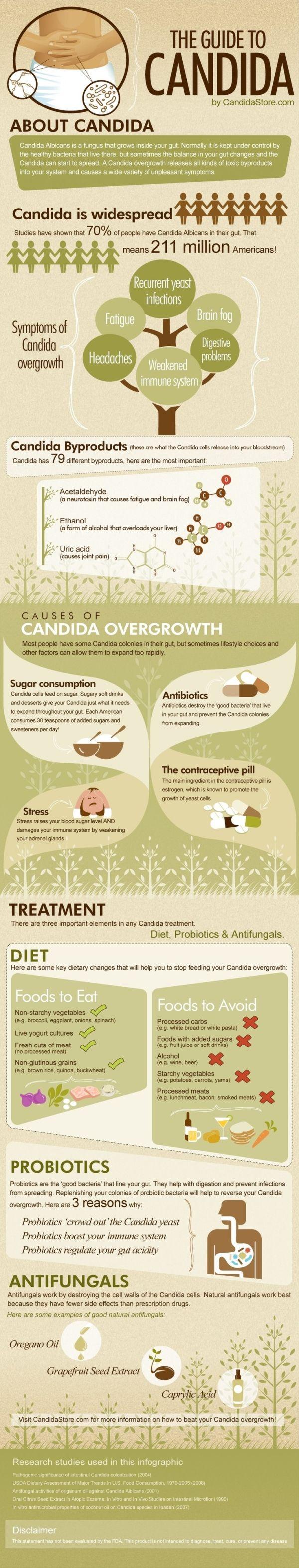 Infografik zur Pilzkrankheit Candida. Was ist das? Woher kommt sie? Und wie weit ist sie verbreitet? Bei einer Nahrungsmittelunverträglichkeit oder Reizdarm solltest du dich auf Candida testen lassen. Mit einer Ernährungsumstellung bekommst du den Pilz in den Griff.