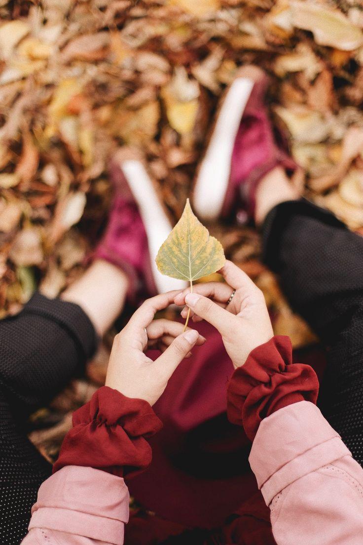 этой правила фотографирования через листву просто