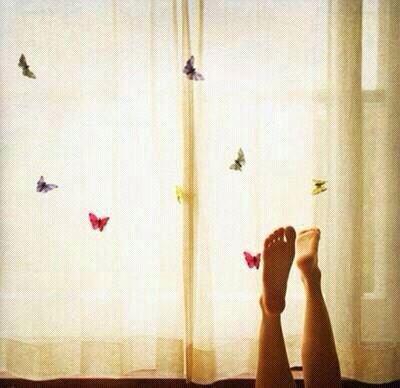 Sueña mariposas
