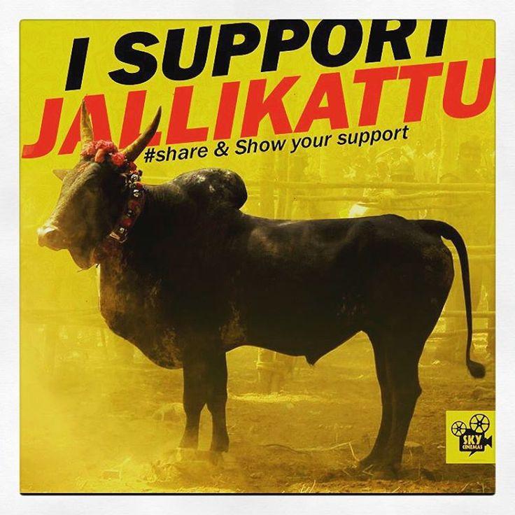 """""""Ithu enga vilayatu  , enga paarambariyam #tamil #tamilian #jallikattu #support_jallikattu #veeram  #instamood #instalove ❤️ #peace ✌️"""""""