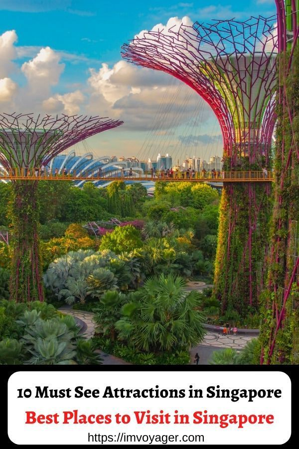 10 Must See Attractions In Singapore Best Places To Visit In Singapore Singapore Travel Travel Destinations Asia Southeast Asia Travel