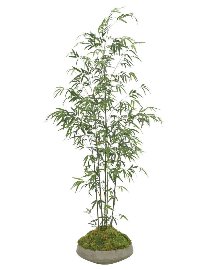 Les 25 meilleures id es de la cat gorie fausse plante sur for Plante fausse