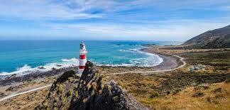 Image result for cape palliser lighthouse