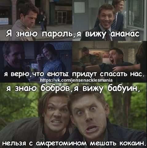 Я знаю пароль, я вижу ананас, я верю, что еноты придут спасать нас. Я знаю бобров, я вижу бабуин, нельзя с амфетомином мешать кокаин. #Сэм_Винчестер #Дин_Винчестер #Кастиэль #Кастиил #Бальтазар #Мем #Сверхъестественное #Sam_Winchester #Dean_Winchester #Castiel #Balthazar #Supernatural