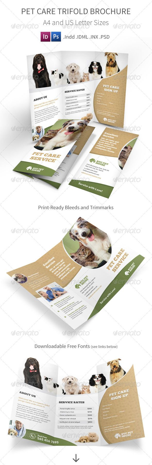 informational brochure template - 29 best trifold animal brochures images on pinterest