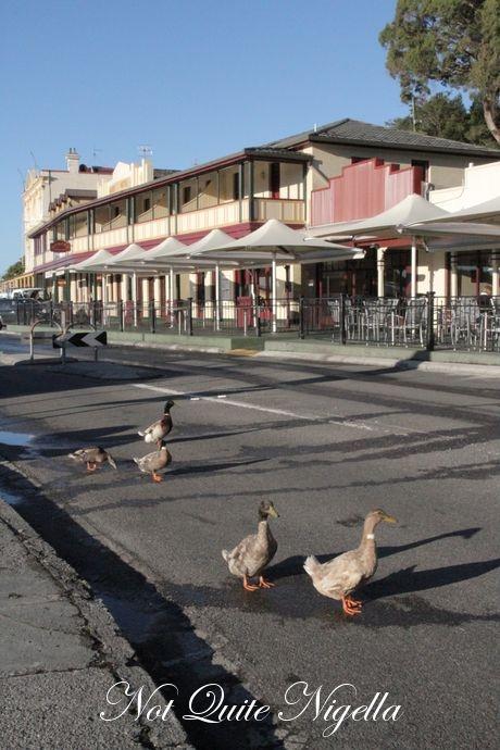 42 degrees restaurant, bonnet island experience, Madsens Hotel, Wild Cafe, Tasmania @ Not Quite Nigella