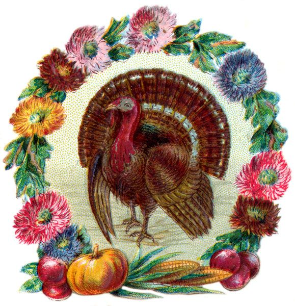 Thanksgiving Images - Image 4: