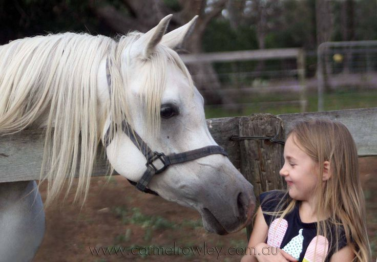CONNECTIONS - KIDS AND PRETTY LITTLE HORSES