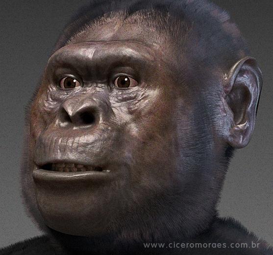 Reconstruction of Australopithecus afarensis by Cicero Moraes - http://www.ciceromoraes.com.br/?p=792