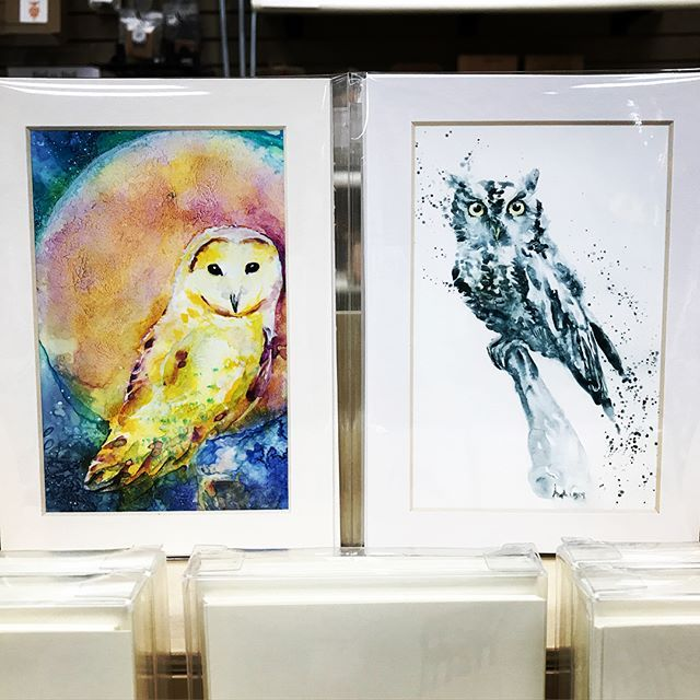 Happy Summer Solstice friends! 🌞 I'm loving these long days here in the Northern Hemisphere! I'm so excited to share that some of my paintings are now available as greeting cards & small prints at a local retailer here in Marin County, CA! If you are in the area, check out Wild Birds Unlimited Nature Shop in Novato! While wild birds are technically not pets, I am counting this as Day 70 of my #100dayPetPortraitPalooza . #doingahappydance #manifestation #inthevortex