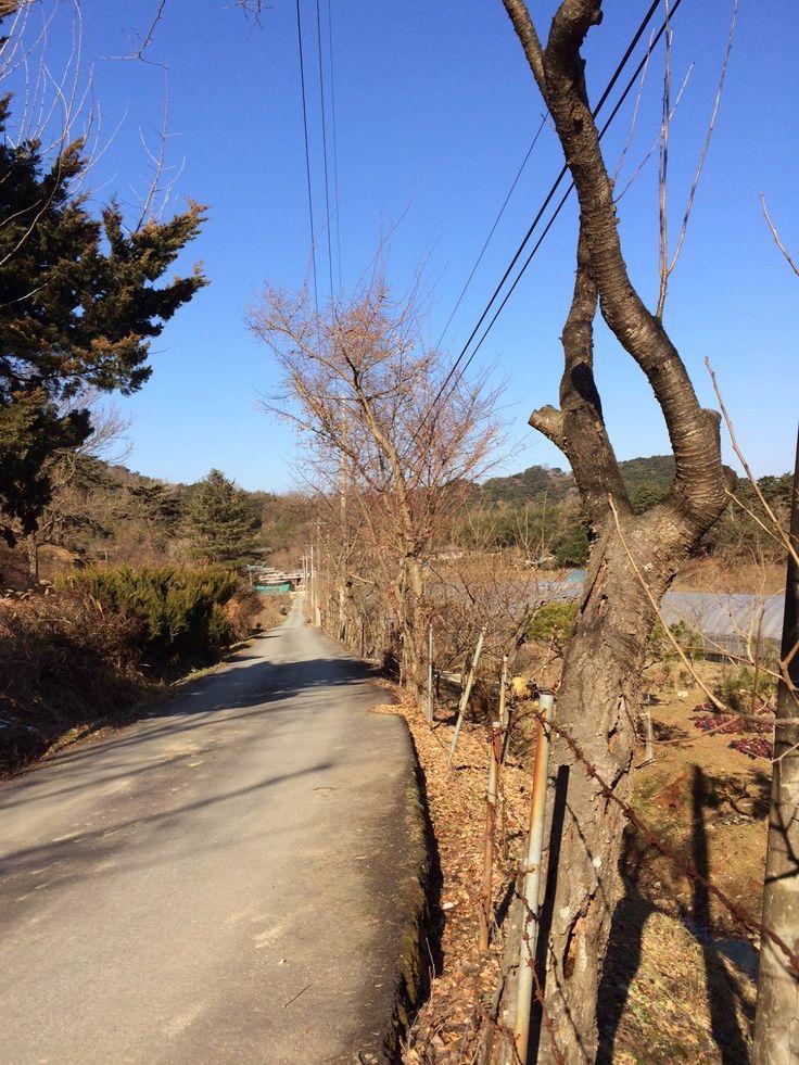 The Damyang House: Hiking: Mudeung National Park - Hidden Lake