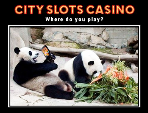 Where do you play City Slots? The best Android Slots Game!   https://play.google.com/store/apps/details?id=com.wincity.ccslots_source=pintpanda
