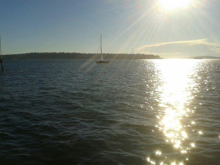 Een laatste foto vanaf de waterkant bij Seattle.  21 september 2016